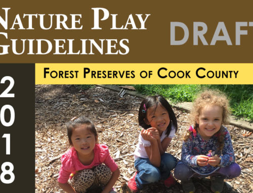 Nature Play Guidelines and Principles